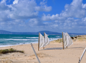 White flags on Comporta beach